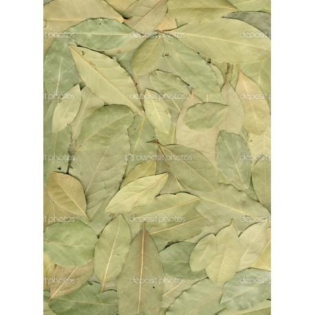Alloro secco in foglie confezioni da 100 grammi
